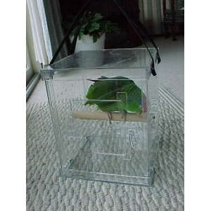 Diy Your Favourite Clear Acrylic Reptile Pet Feed Case