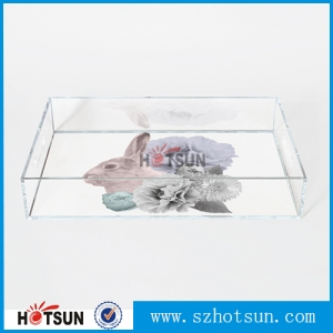 Fashion Clear Acrylic Tray supplier china