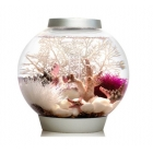 China Round acrylic fish tank factory